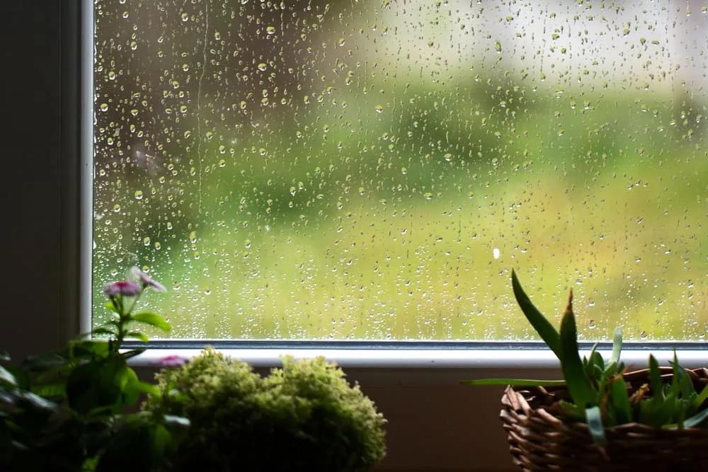 пластиковые окна устойчивы к влажности